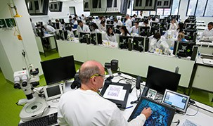 Image of a lab